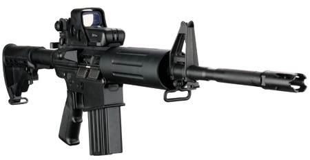 DPMS Panther LR-308 AP4 - .308