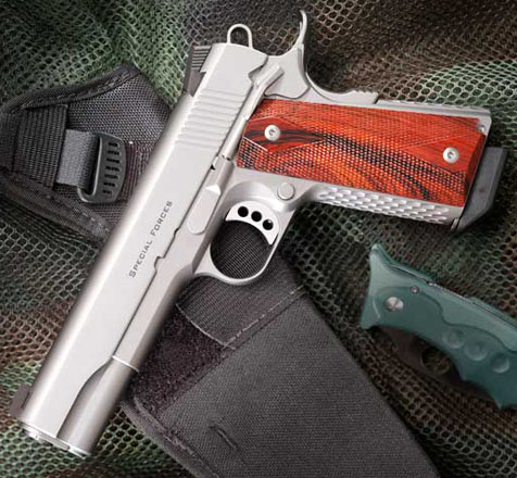 Ed Brown Special Forces, 5 inch, .45ACP, Stainless Steel, Night Sights, Bobtail, Ambi-Safety