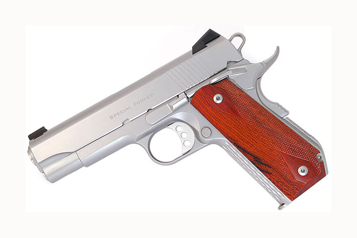 Ed Brown Special Forces Carry, .45ACP, Stainless Steel, Night Sights